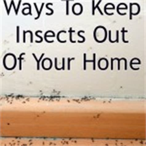 how to keep bugs out of your room 12 kitchen transformations you ve got to see to believe