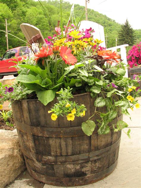 wine barrel planter ideas whiskey barrel planter outdoor whiskey barrel planter barrel planter and