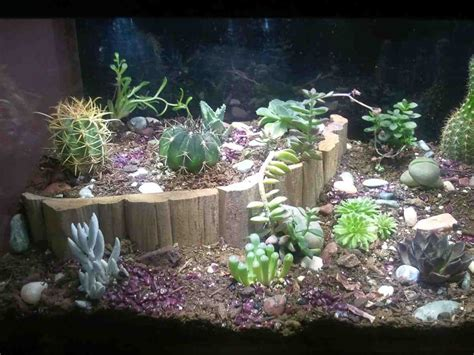 Unique Fish Tank Decorations by Custom Aquarium Decorations Decor Ideasdecor Ideas