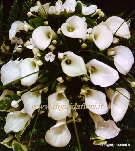 fiore calle bianche bouquet da sposa con calle bianche fiorista roberto di guida