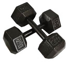 Weights Bench Sale Gym Equipment Explained Free Weights 101 Rockbottomgolf Com