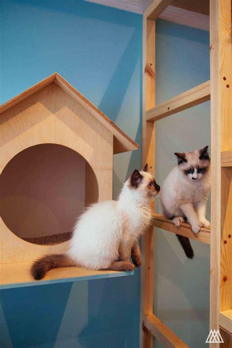 Feline Inspired Speakers From Japan by Edinburgh S Cat Caf 233 Design Week