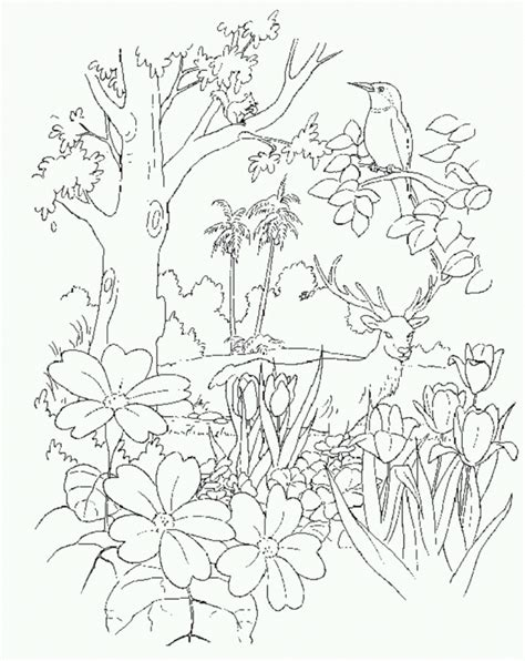 Coloring Pages Of The Garden Of Eden | garden of eden coloring page coloring home