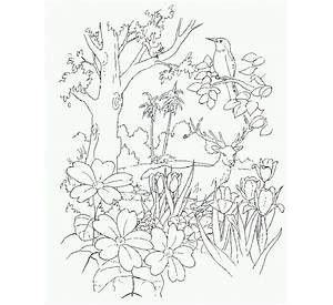 garden of eden coloring pages free and printable - Garden Of Eden Coloring Pages