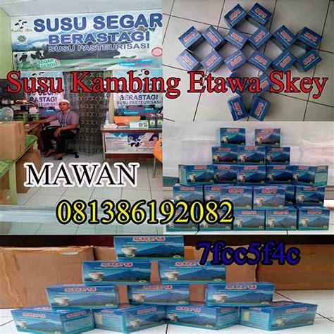 Kambing Etawa Gomars Sachet Original Pom Bpom Asli distributor kambing etawa skey murah di medan distributor
