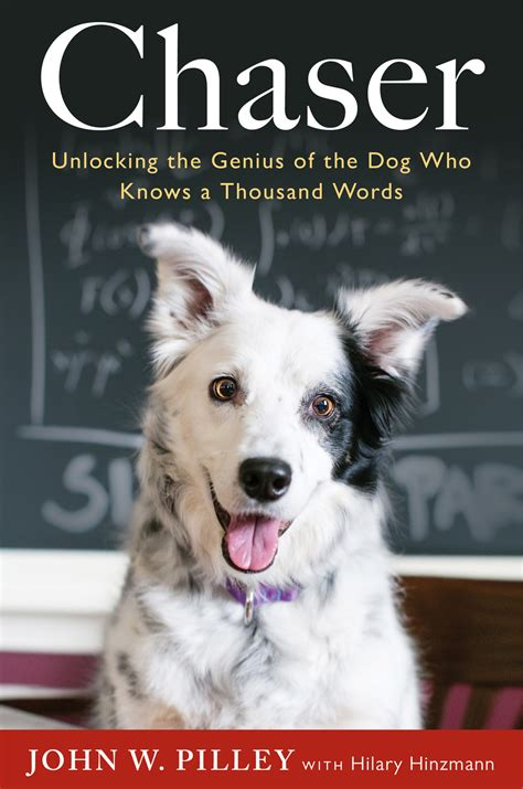 the chaser books chaser can dogs learn language book review stale