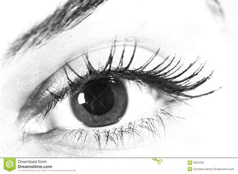 imagenes en blanco y negro de ojos ojo en blanco y negro fotograf 237 a de archivo imagen 3921232