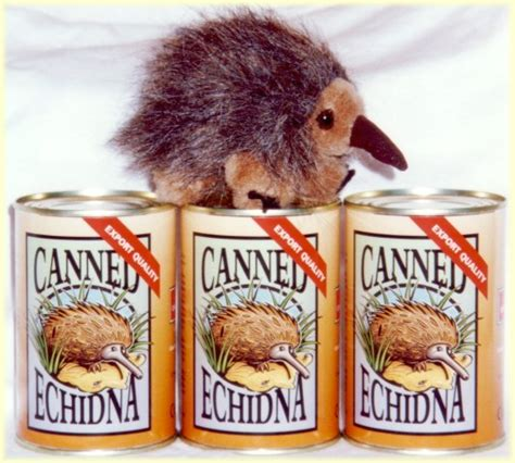 christmas gag gift echidna toy in a can