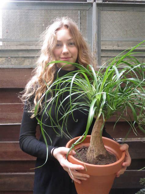 ma plante et moi ma plante mon bonheur