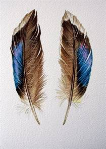water color feather two feathers original watercolor feather painting
