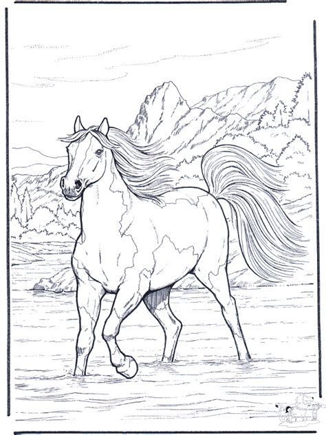 coloring pages of real horses in the river horses