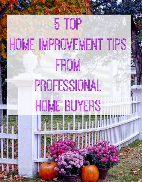 5 home improving tips from professional house buyers