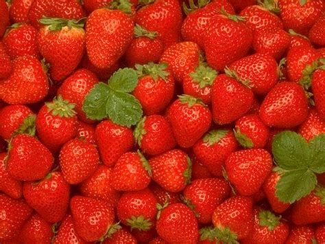 images of fruit wallpapers fruits