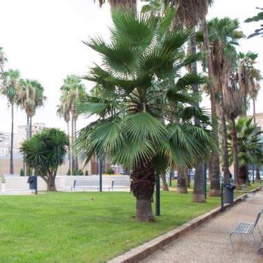ville e giardini palermo comune di palermo ville e giardini prosegue il piano