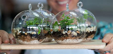 Dining Room Pics by The Best Brisbane Terrariums Lifestyle Style Magazines