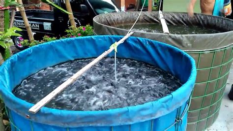Jual Mesin Pelet Ikan Di Bandung lebih menguntungkan inilah cara mengelola lahan sempit di