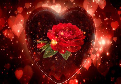 gifs hermosos gifs hermosos flores ancontradas en la web