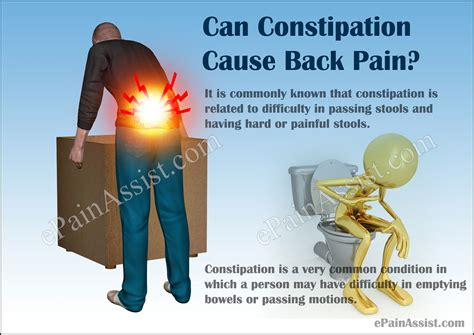 What Causes Blood In Stool And Lower Back by Can Constipation Cause Back