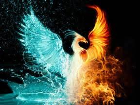 Fire and ice tattoo fire and water tattoo water phoenix phoenix fire
