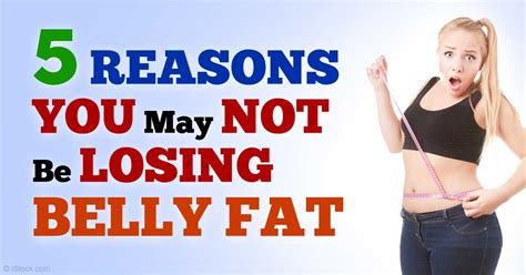 healthy fats to get period back fitness guide page 6 healthy food and sport tips