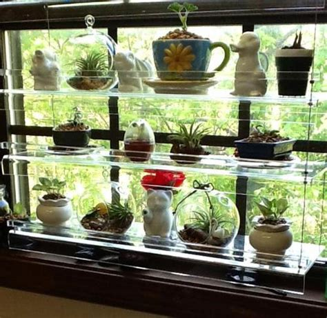 Paket Pot N Hanging For Window N Stand 3 In 1 hanging window plant shelves plant stand