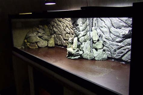 Decor Polystyrene Aquarium by D 233 Cor Naturel Pour Les Bacs Du Local