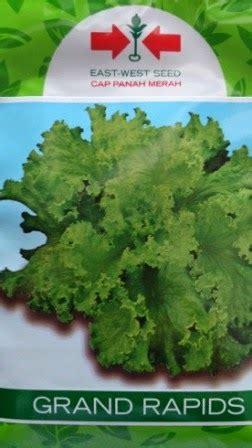 Daftar Bibit Cap Panah Merah lmga agro grosir belanja produk pertanian benih