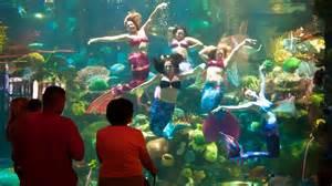 Party Rooms In San Antonio 20 Best Things To Do In Las Vegas