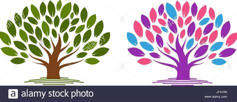 Family Tree Genealogy Vector Stock Photos Family Tree Genealogy Vector Stock Images Alamy Ecology Family Tree Logo Stock Vector Illustration Of Biology 91037689