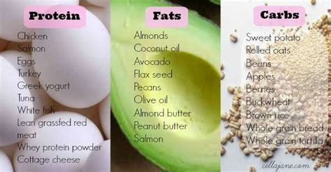 healthy fats vs carbs protein power queal tasty balanced nutrition