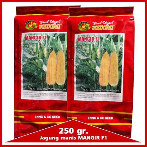 Harga Benih Jagung Manis 2018 jual benih jagung manis mangir f1 250 gr harga murah
