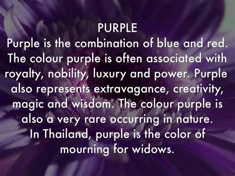 what does the color purple colour meanings by henrica burns