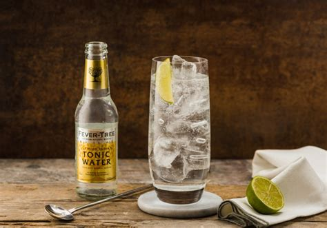 vodka tonic lemon fever tree recipes recipes vodka tonic saksham