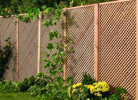 Patio Privacy Screening Ideas N 252 Tzliche Informationen Und Tipps F 252 R Den Gartenzaun Bau
