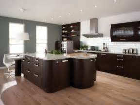 Modern Style Kitchen Design by 2011 Contemporary Kitchen Design And Decorations Pictures