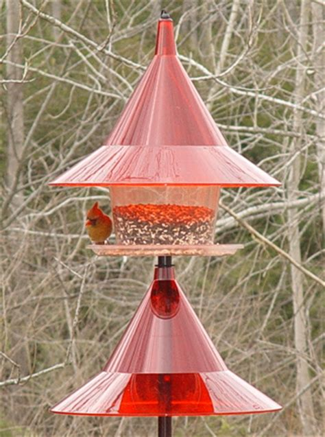 sky cafe red squirrel proof bird feeder w pole baffle