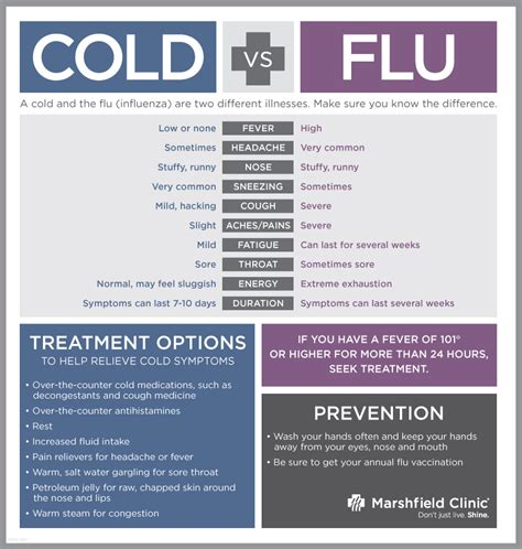 Difference Between Cold And Hair Dryer flu symptoms vs cold vessel