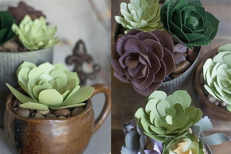 succulents that don t need light diy paper succulents rl