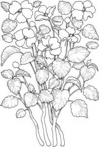 printable coloring pages for adults only flower coloring page
