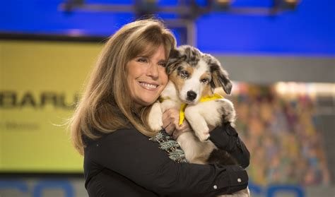 who won the puppy bowl 2017 these 2017 puppy bowl dogs are all adoptable fur real going viral zimbio