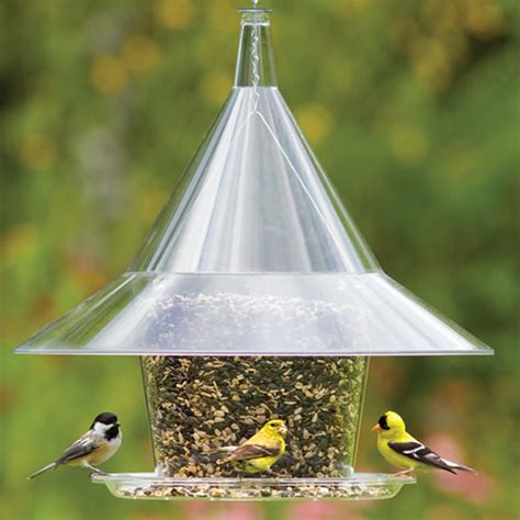duncraft com the best squirrel proof sky cafe bird feeder
