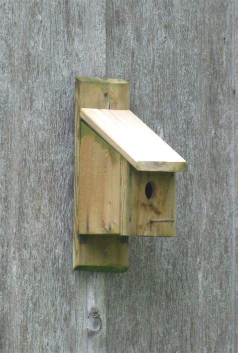 birdhouse placement mounting methods