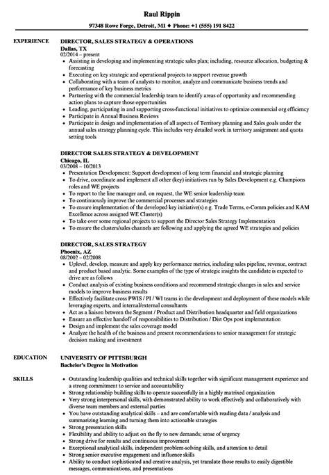 Newscast Director Sle Resume by Director Sales Strategy Resume Sles Velvet