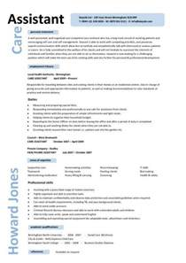 care manager cv template personal summary career history