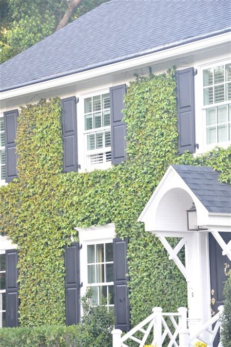 ivy staircase steunk pinterest ivy lodges and love black shutters and love ivy growing on a house