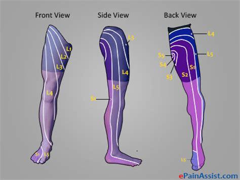 nerve pain causes nerve pain thighs leg pain causes of entire leg pain partial leg pain and