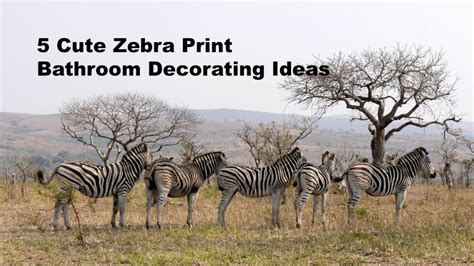 zebra themed bathroom 5 cute zebra print bathroom decorating ideas