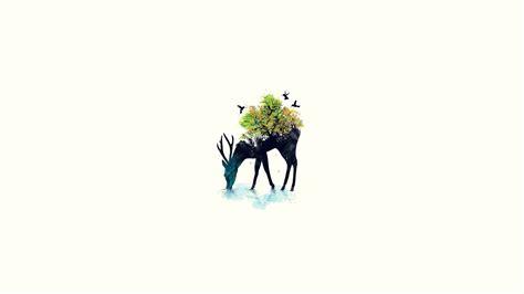 minimalism cat tree hd wallpaper wallpapersfans com minimalist desktop wallpapers
