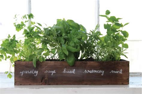 indoor window sill planter indoor wooden tabletop herb garden diy tabletop herb