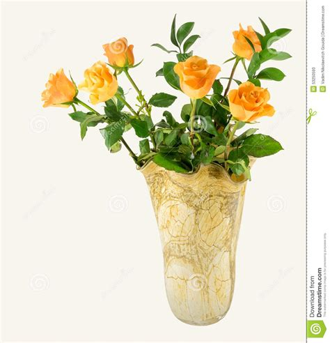 yellow roses in vase stock photo image 53250593